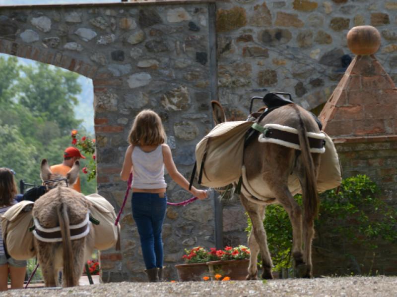 Ezelrijden in Toscane met kinderen