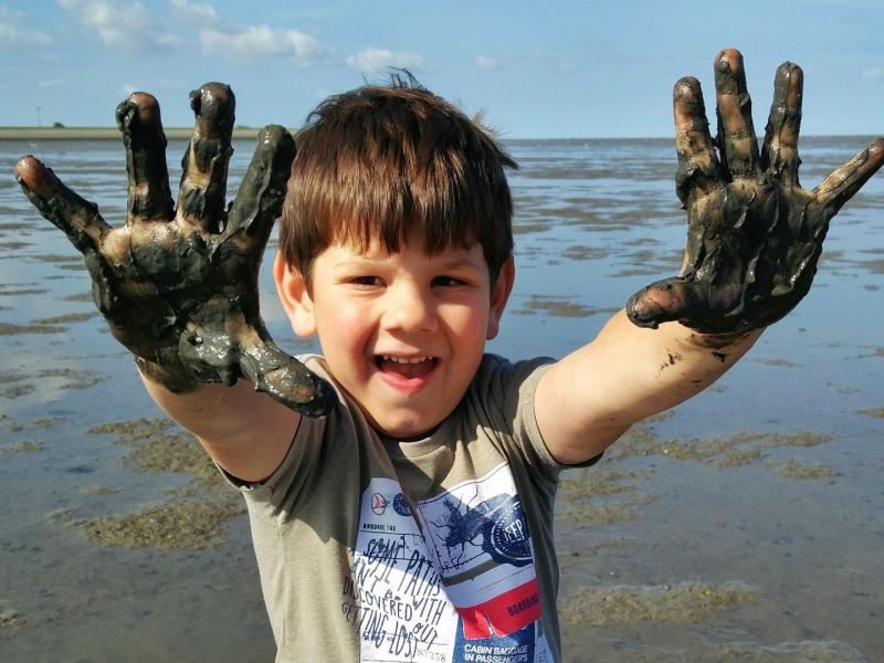 Wadlopen Friesland met kinderen