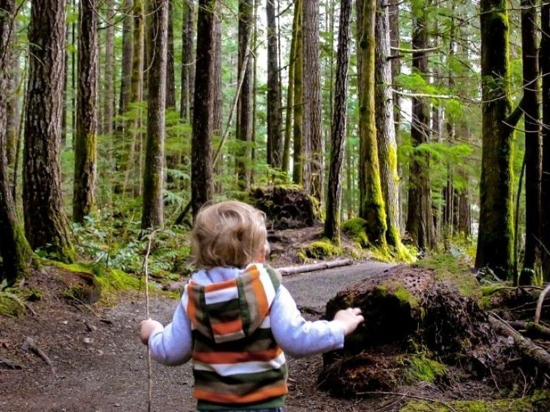 Wandelen in het Zwarte Woud met een kind