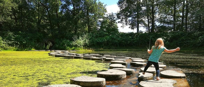 Wandelen door Het Lankheet Waterpark in Haaksbergen