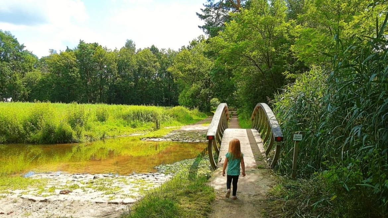 Wandelingen in Twente met kinderen