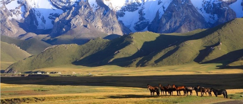 Reizen in Kirgizië met kinderen