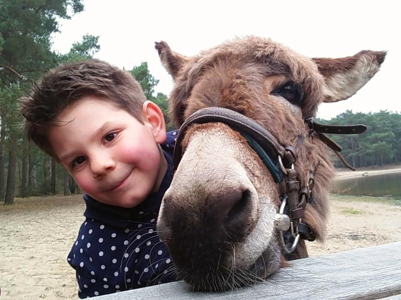 Wandelen in Noord-Brabant met kinderen