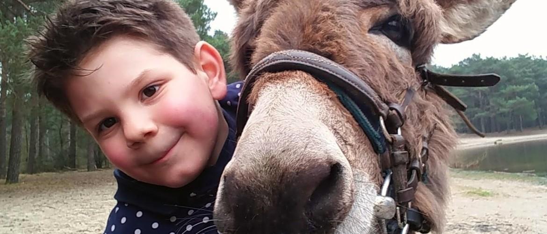 Wandelen op de rug van een ezel door Herperduin