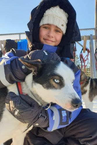 Husky rijden met kinderen