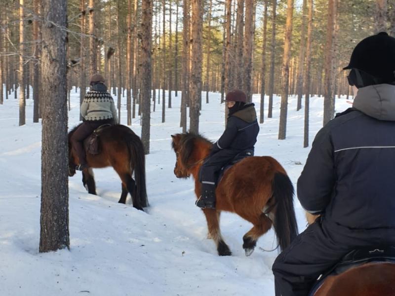 Paardrijden in de sneeuw met kinderen