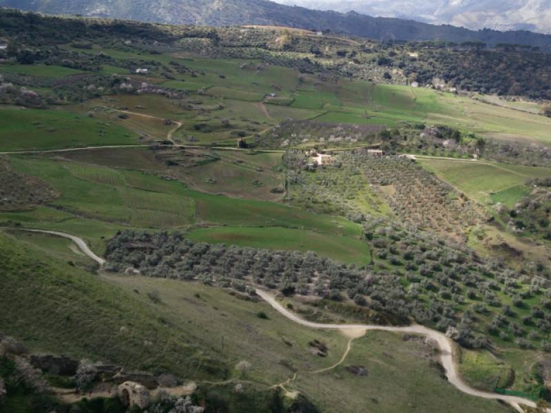 Andalusië met een huurauto