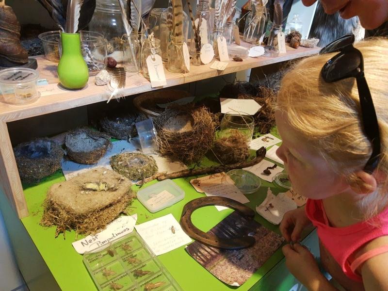 Bezoekerscentrum Dwingelderveld met kinderen