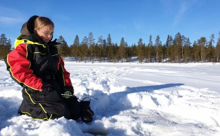 Wandelen in de Zweden met kind