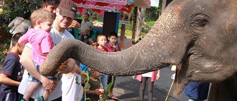 Chiang Mai Zoo, te dicht bij de dieren