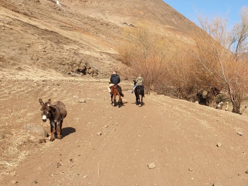 Paardrijden in Lesotho met gezin