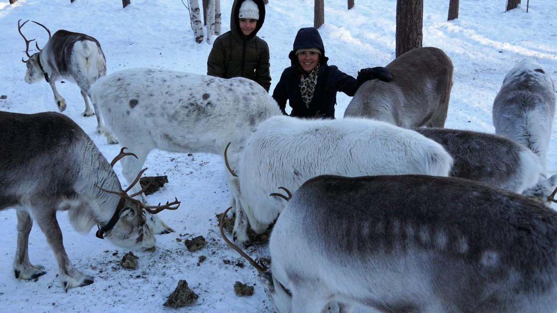 Zweden in de winter met kinderen
