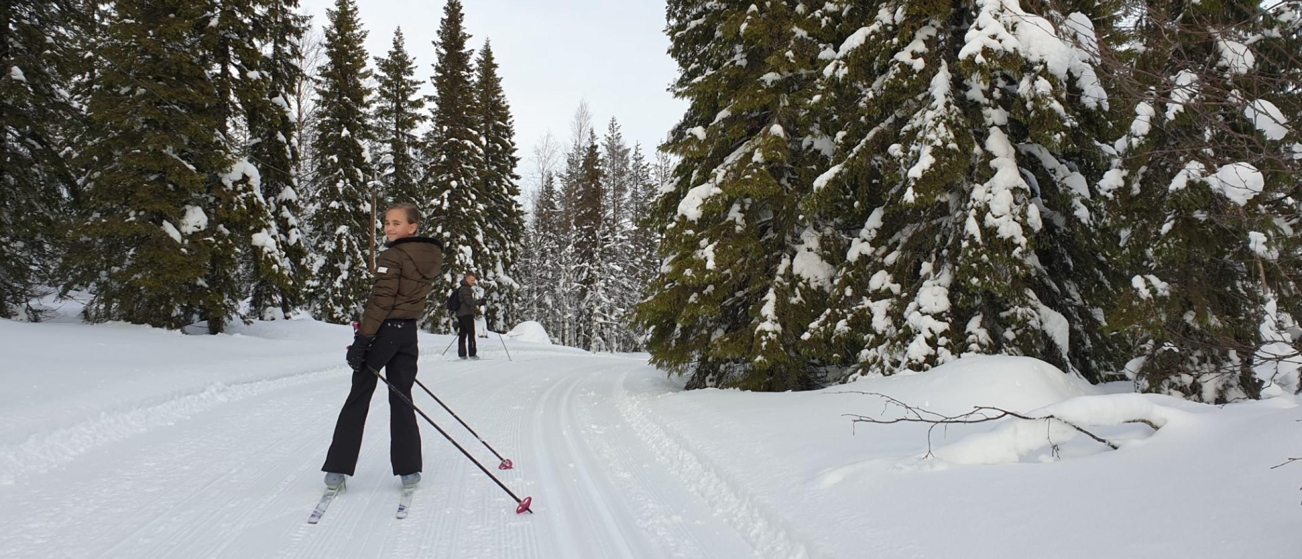 Dit is Gold of Lapland! Een prachtig stukje Zweden