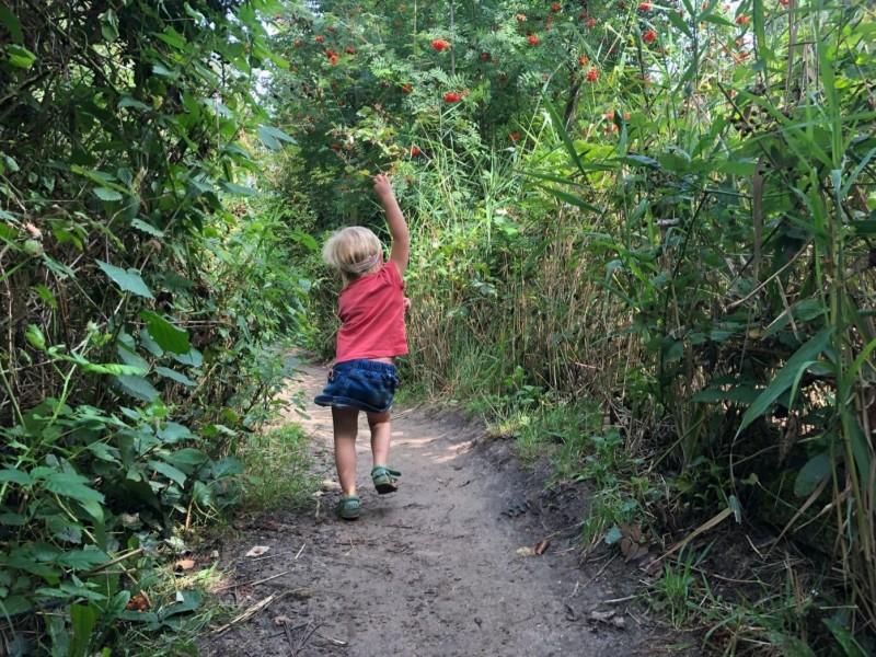 Uitjes in Zuid-Holland met kinderen