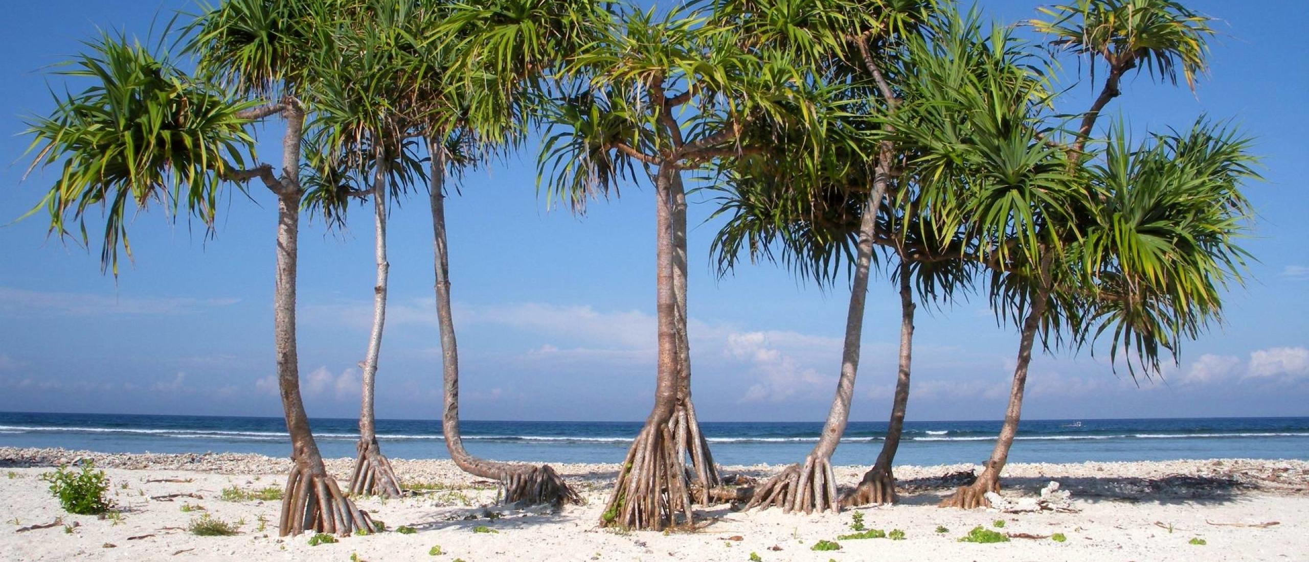 Gili eilanden, genieten van zon, zee en strand