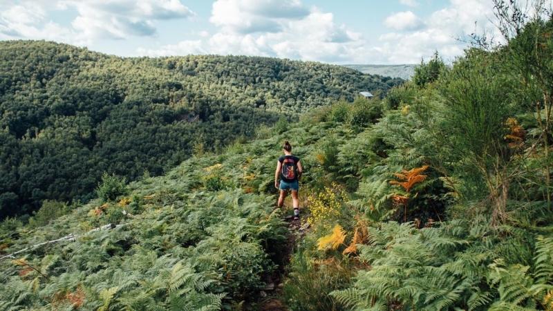 Wandelen in de Franse Ardennen met kinderen