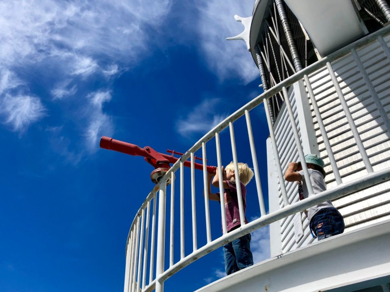 Nieuw-Zeeland met kinderen: cultureel Wellington