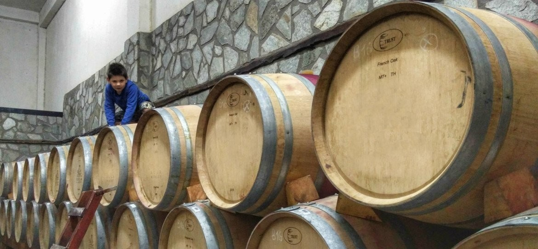 Wijntour Andalusie met klein kind