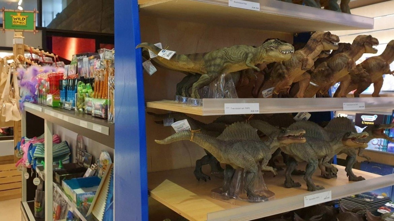 Dino Winkel bij Paleospace de Lodyssee