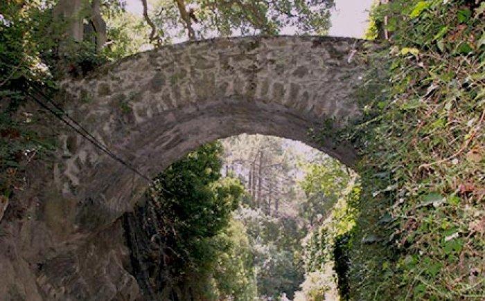 Lopen in de omgeving, prachtige natuur en leuke bruggetjes spotten
