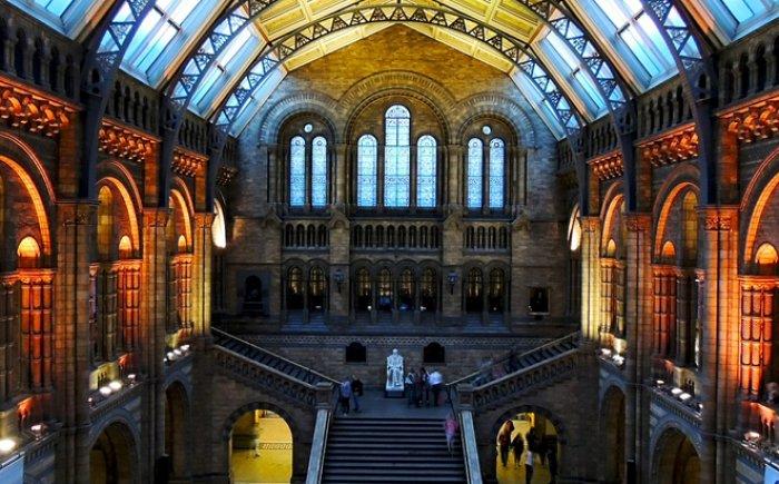 Natural Museum Londen met kinderen
