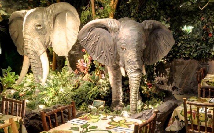 Rainforest Cafe eten in Londen met kinderen
