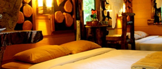 Khaosok Tree House Resort