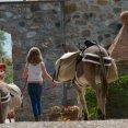 Wandelen door Toscane met een ezel als gezelschap