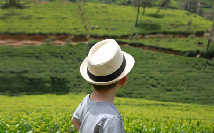 Rondreis Sri Lanka met kinderen