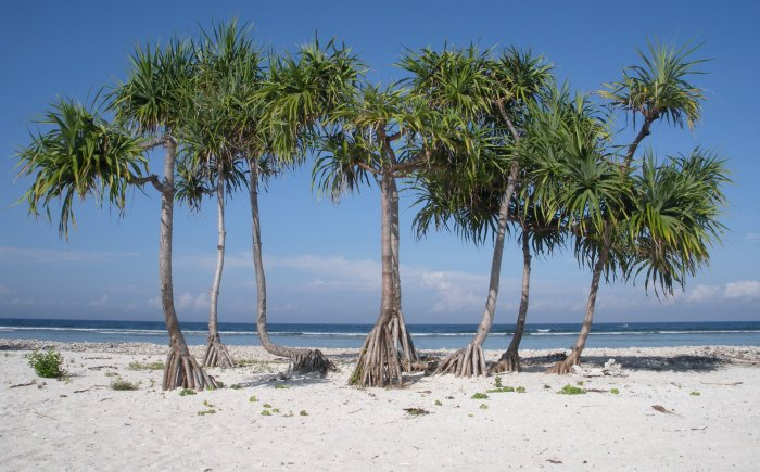 Strand in Indonesië Gili eilanden