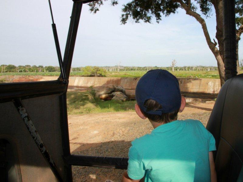 Safari Yala met kinderen