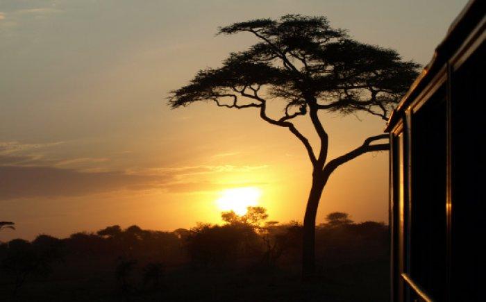 Sundowner Oost-Afrika met gezin