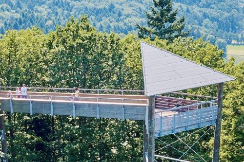 Baumkronenweg Waldkirch