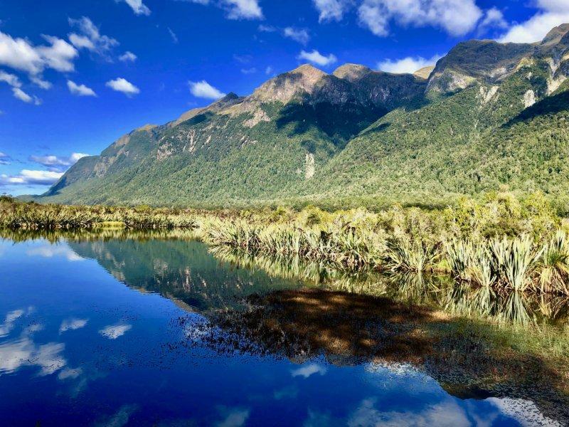 Nieuw Zeeland familiereis