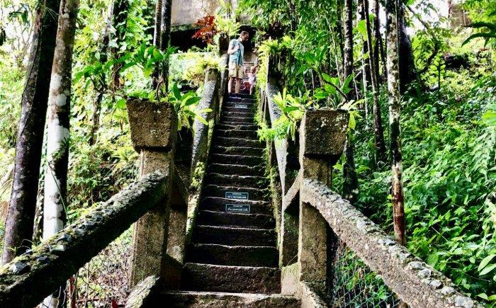 Grand staircase Paronella Park