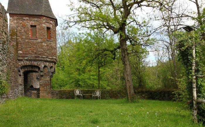 Wandelen in de Eifel natuur