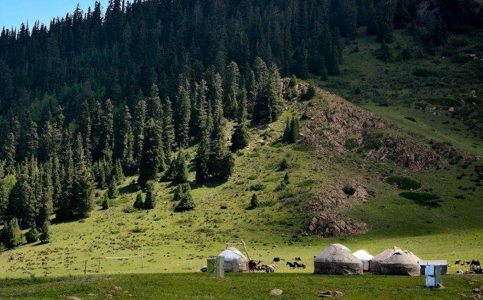 Overnachten in joertendorp in Kirgizië