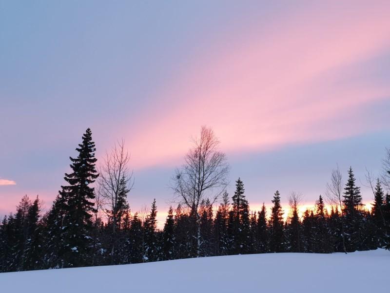 Bijzonder overnachten in Zweeds Lapland