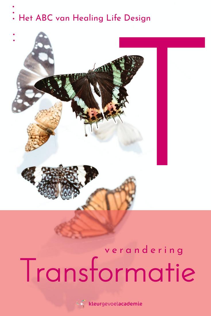 T van transformatie verandering vlinder