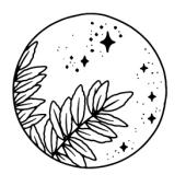 Nieuwe Maan Reflectie - Leren in flow met de maan - KujAWelkin