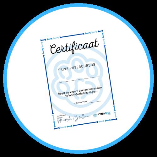 KynoFlex Hondenschool Utrecht Pubercursus certificaat