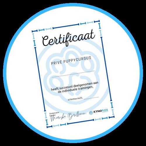 KynoFlex Hondenschool Utrecht Puppycursus certificaat