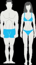 Mesomorph Lichaamstype