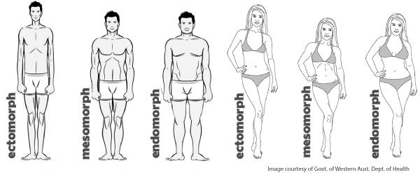 wat is mijn lichaamstype