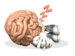 Pauze bij Zittend Werk voor je Hersenen