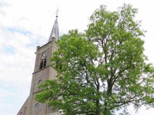 acaciaboom-en-kerk