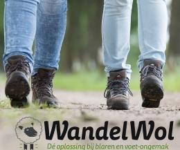wandelwol antidruk 40g
