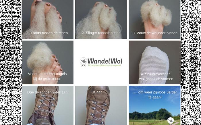 wandelwol handleiding