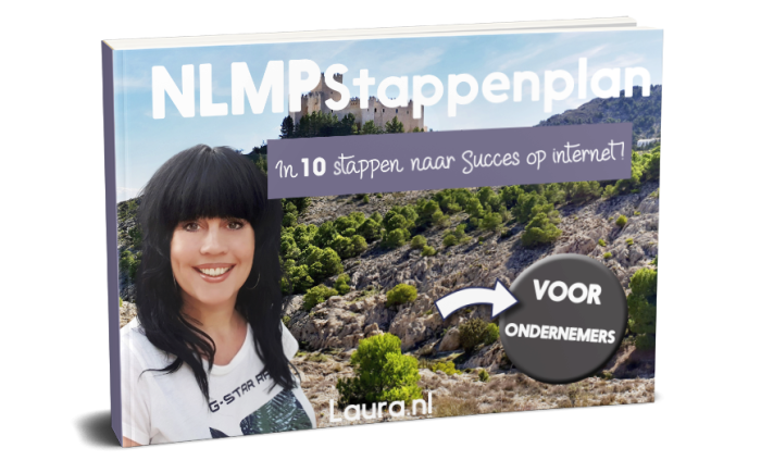 internet marketing e-book NLMP stappenplan