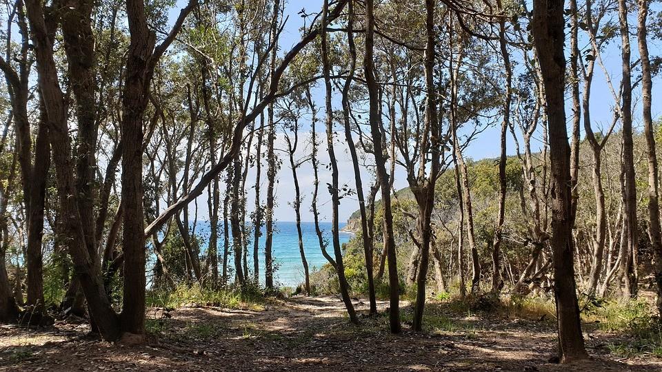 Cala Violina een strand in een natuurreservaat